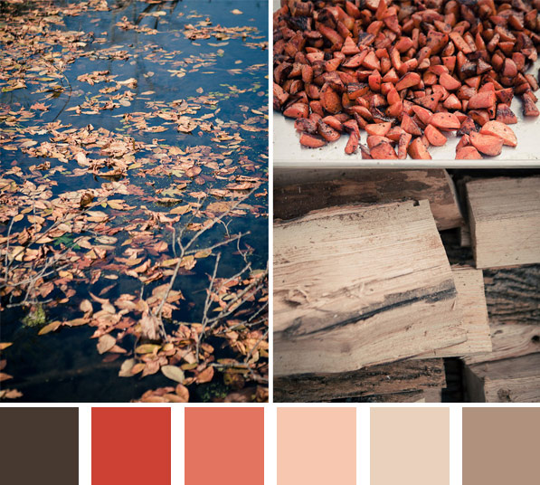 Fall is coming color board