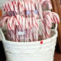 Candy Canes in Florence, Italy