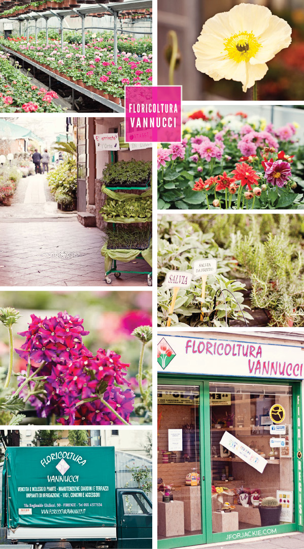 Floricoltura Vannucci - Buy plants & flowers in Florence